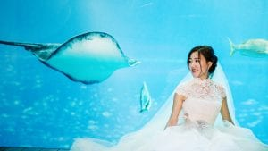 Nan Yang & Xiaoxuan's weddings at the Equarius Hotel & Sentosa S.E.A Aquarium. Wedding photography by Brian Ho / thegaleria